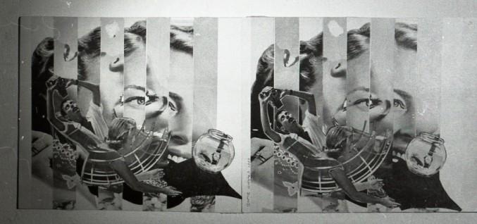 3d collage bowl