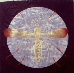 ELECTRA circle fly